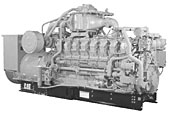 1300 ekW Continuous Gas Generators